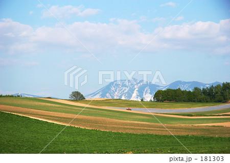 美瑛の丘 181303