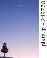 北海道 美瑛 夕暮れの写真 249778
