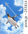 空飛ぶペンギン 255814
