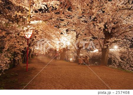 桜のトンネル 257408