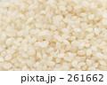 お米 こめ おこめの写真 261662