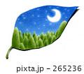 小さな夜 265236