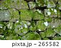 金沢城の石垣 265582