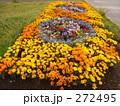 花壇 272495