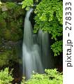 新緑の滝 278333