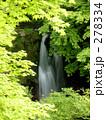 新緑の滝 278334