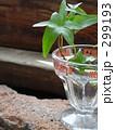 ハーシーチョコ グラス 299193