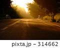 山道 林道 道路の写真 314662