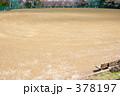 青葉ヶ丘公園 378197