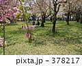 青葉ヶ丘公園 378217