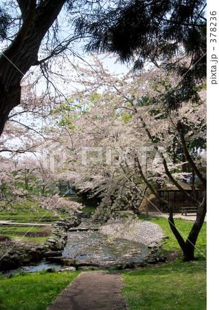 青葉ヶ丘公園 378236