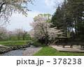 青葉ヶ丘公園 378238