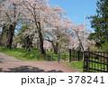 青葉ヶ丘公園 378241