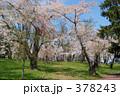 青葉ヶ丘公園 378243