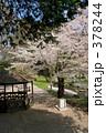 青葉ヶ丘公園 378244