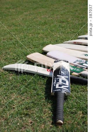 クリケットバット 387037
