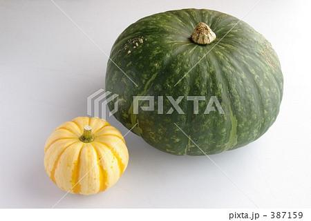 かぼちゃ大小 387159