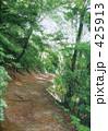高尾山の一本道 林道 山道 425913