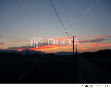夕陽の電線 437231