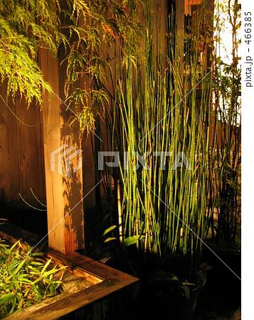 竹の玄関飾り 466385