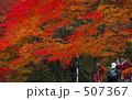 秋深し02 507367