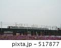 名鉄電車 コスモス 電車の写真 517877