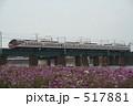 名鉄電車 コスモス 電車の写真 517881