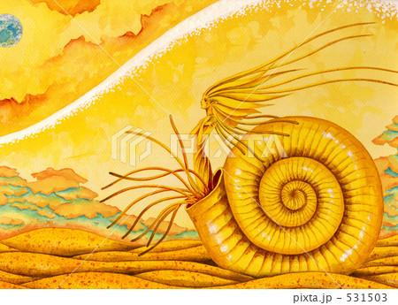 化石の記憶 531503