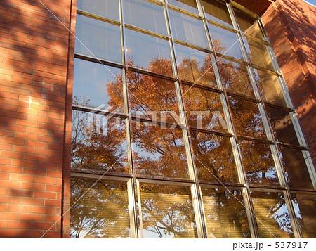 窓ガラス 写りこみ 映り込みの写真素材 [537917] - PIXTA