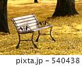 ベンチ 一面 イチョウの写真 540438