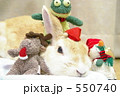 メリークリスマスうさぎ 550740