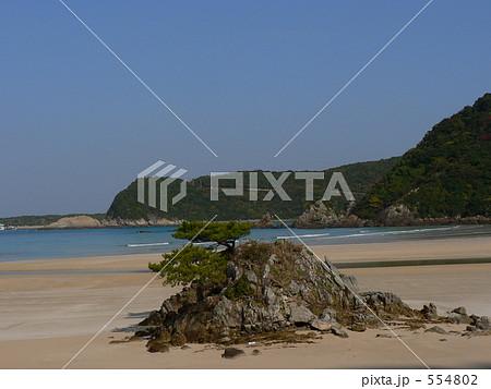 長崎県五島列島 松と浮島 554802