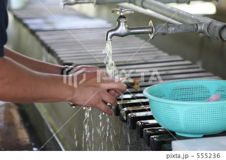 岩名を洗う 555236