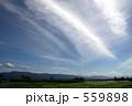 筋雲 559898