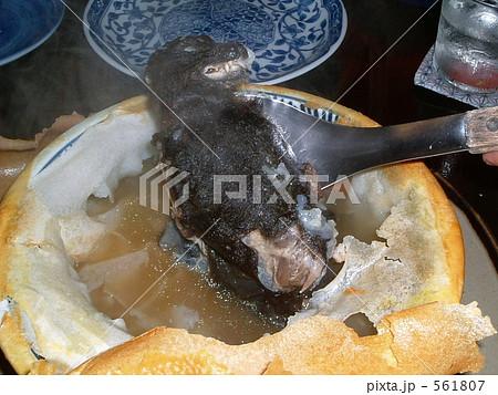 フルーツバットのスープ 561807
