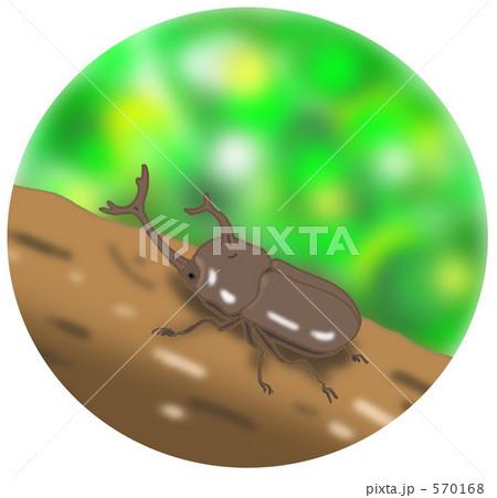 カブト虫 570168