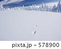 雪景色 足跡 雪原の写真 578900