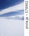 雪景色 足跡 雪原の写真 578902