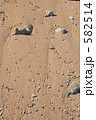 石垣島の砂浜 582514