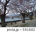 錦帯橋 591682
