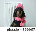 ピンクが似合う女の子 599967