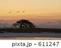 別海の夜明け 611247