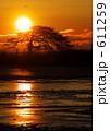 別海一本松の夜明け 611259