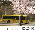 桜と黄色いバス 628219
