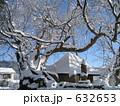庵と大樹 632653