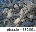 雪の綿花 632661