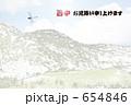 オニヤンマ_ギラギラ 654846