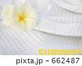 summer 662487