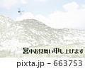 オニヤンマ 663753