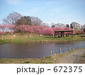古河総合公園 古河桃まつり 672375